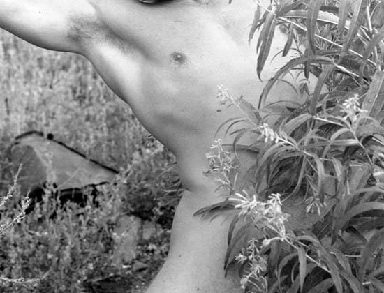 Лучшая фотография с сайта Галерея известной обнаженной мужской модели