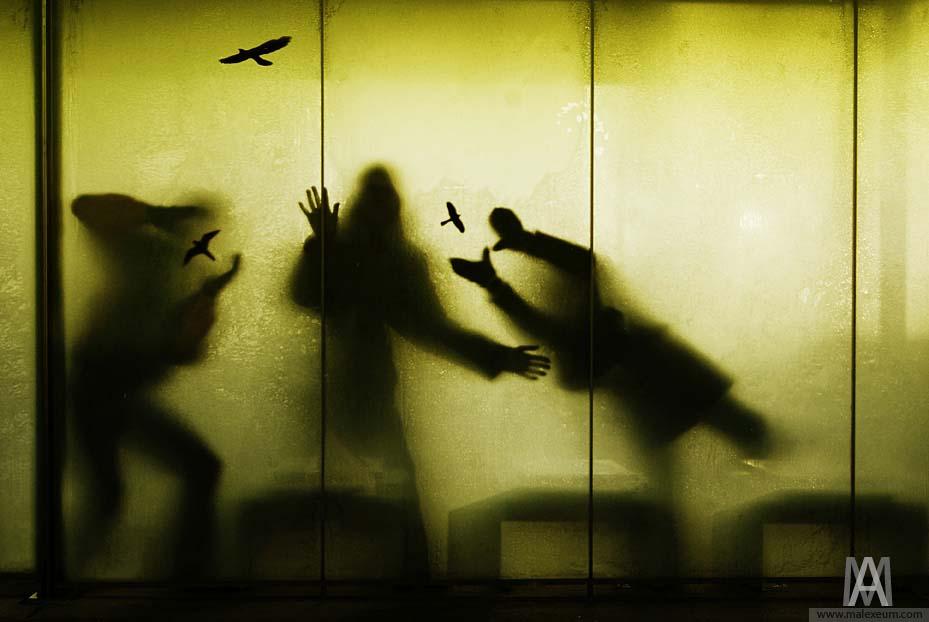 Лучшая фотография с сайта Креативная фотосъемка мероприятий. Хороший фотограф Макушин Алексей