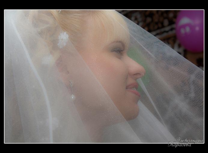 Лучшая фотография с сайта Фотограф на свадьбу Александра Карасева