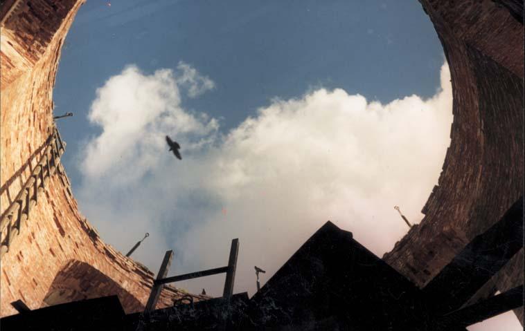 Лучшая фотография с сайта Сайт пермского художника Сергея Аксёнова