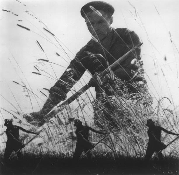 Лучшая фотография с сайта Автор фотопоэм и фотороманов фотохудожник Владислав Бороздин