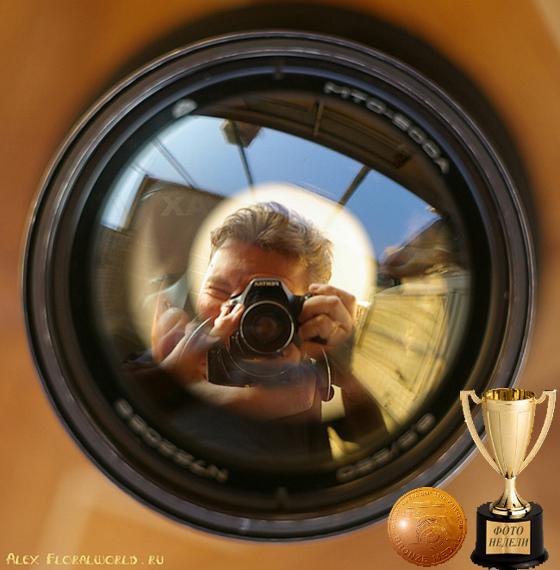 """Лучшая фотография с сайта Клуб любительской художественной фотографии """"Смена 8М"""" на Privet.ru"""